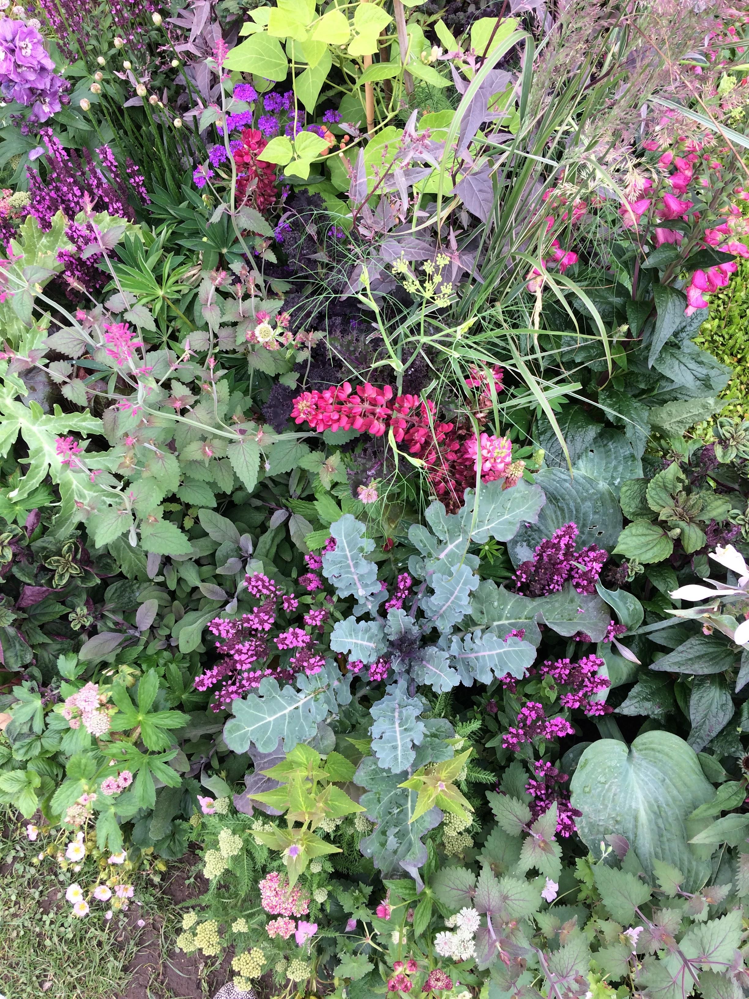 en vild og vidunderlig urban oase blomster og grøntsager