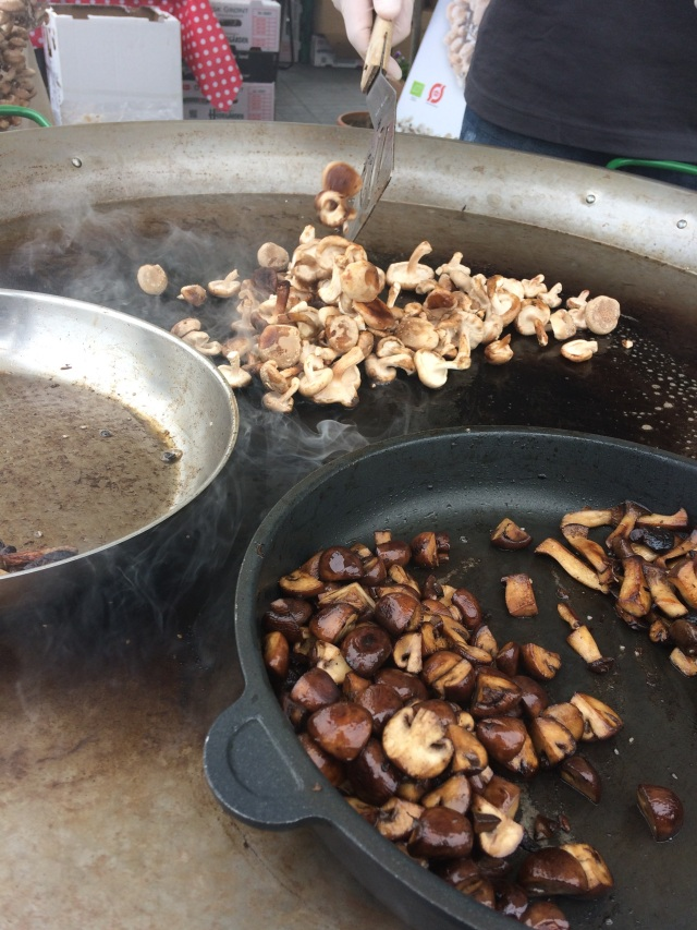 tvedemose svampe