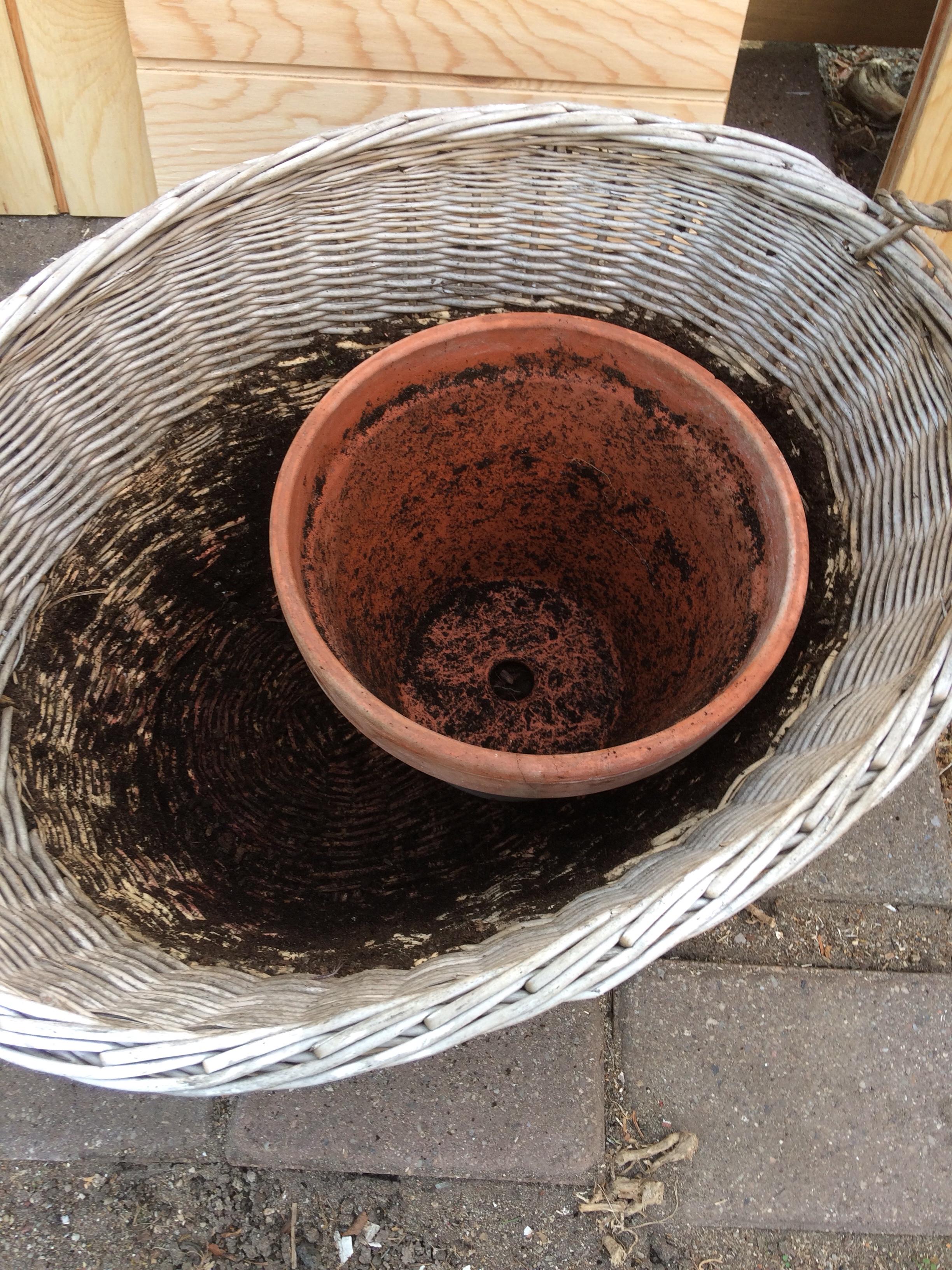 tom potte og kurs som der har stået krydderurter i hen over sommeren
